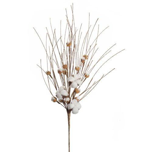 Gracie Oaks Cotton Pod Bush Desktop Foliage Plant (Set of 12)