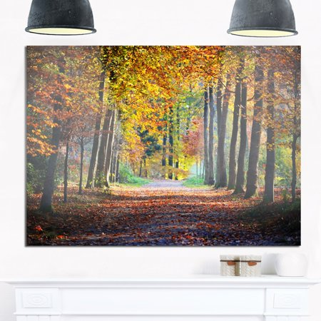 design art wide pathway in yellow fall forest - landscape photo glossy metal wall - Forest Metal Wall