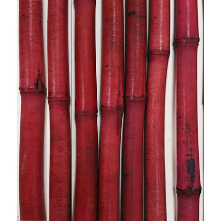 GreenFloralCrafts Decorative Bamboo Poles, 3.5 Feet Tall, Set of 8 Bamboo Sticks