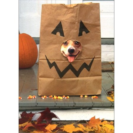 Avanti Press Corgi in Treat Bag Dog Halloween Card
