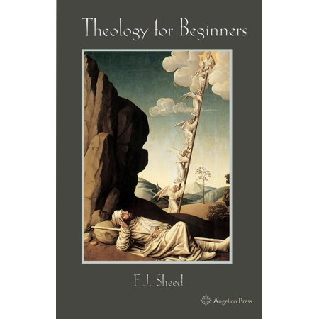 Theology for Beginners - eBook
