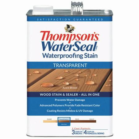 - Thompsons WaterSeal Transparent Waterproofing Stain