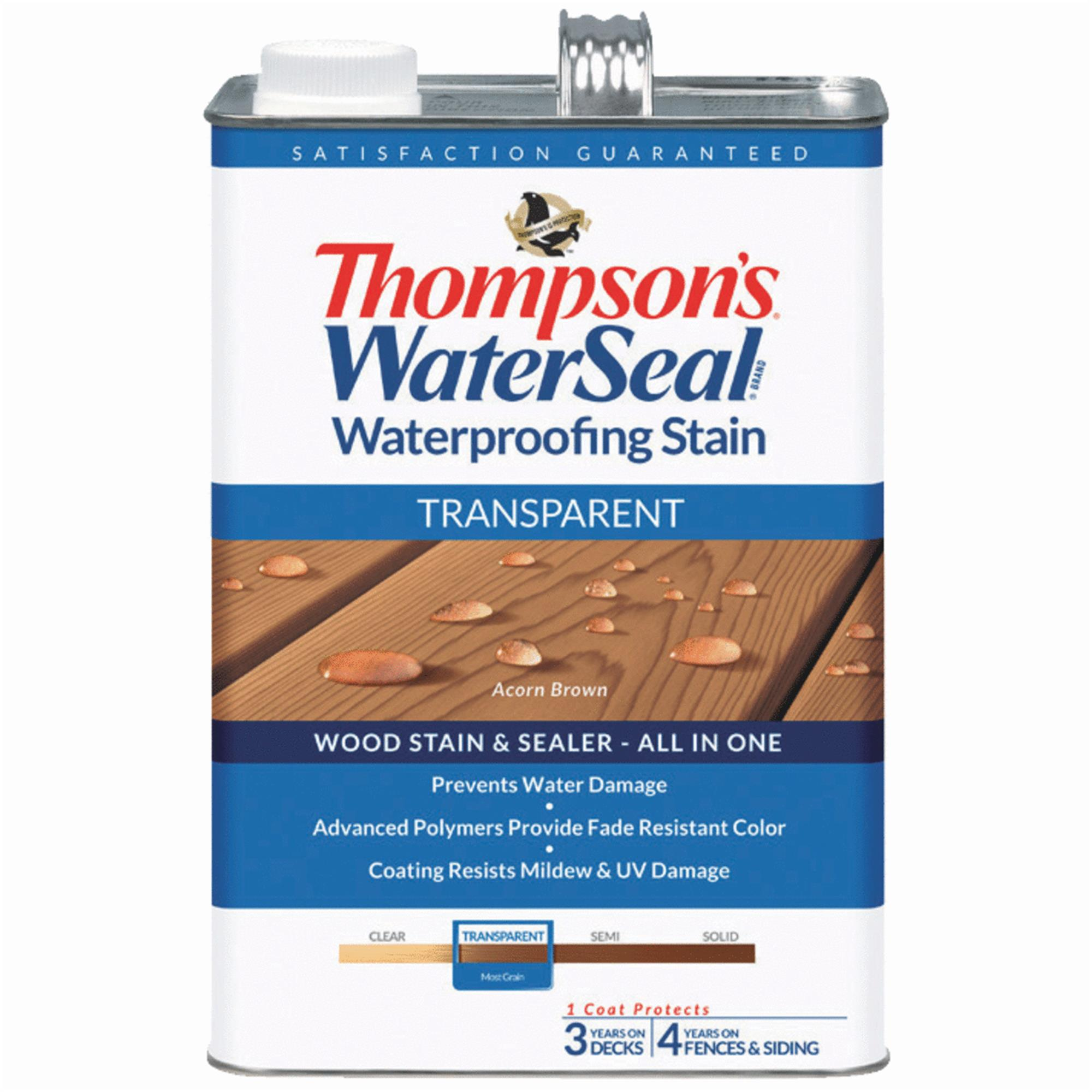 Thompsons WaterSeal Transparent Waterproofing Stain