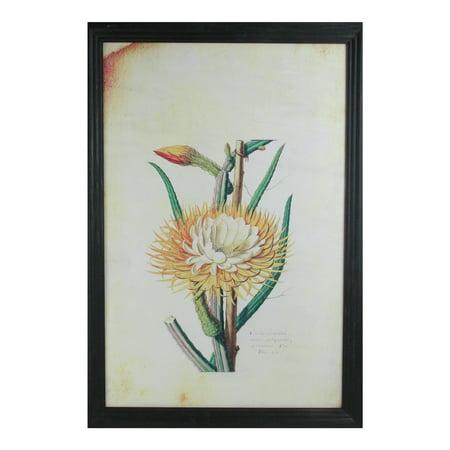 "26"" Yellow and Green Desert Baileya Flower with Black Photo Frame ()"