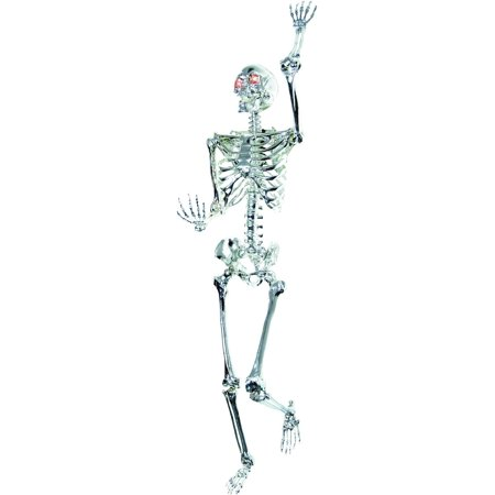 5' Skeleton Chrome Light-up Halloween - Halloween Skeleton Songs For Kids