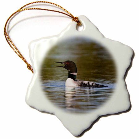 Loon Ornament (3dRose British Columbia, Common Loon bird on lake-CN02 LDI0009 - Larry Ditto, Snowflake Ornament, Porcelain, 3-inch)