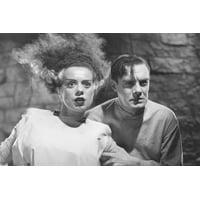 Elsa Lanchester Bride Of Frankenstein B&W 24X36 Poster