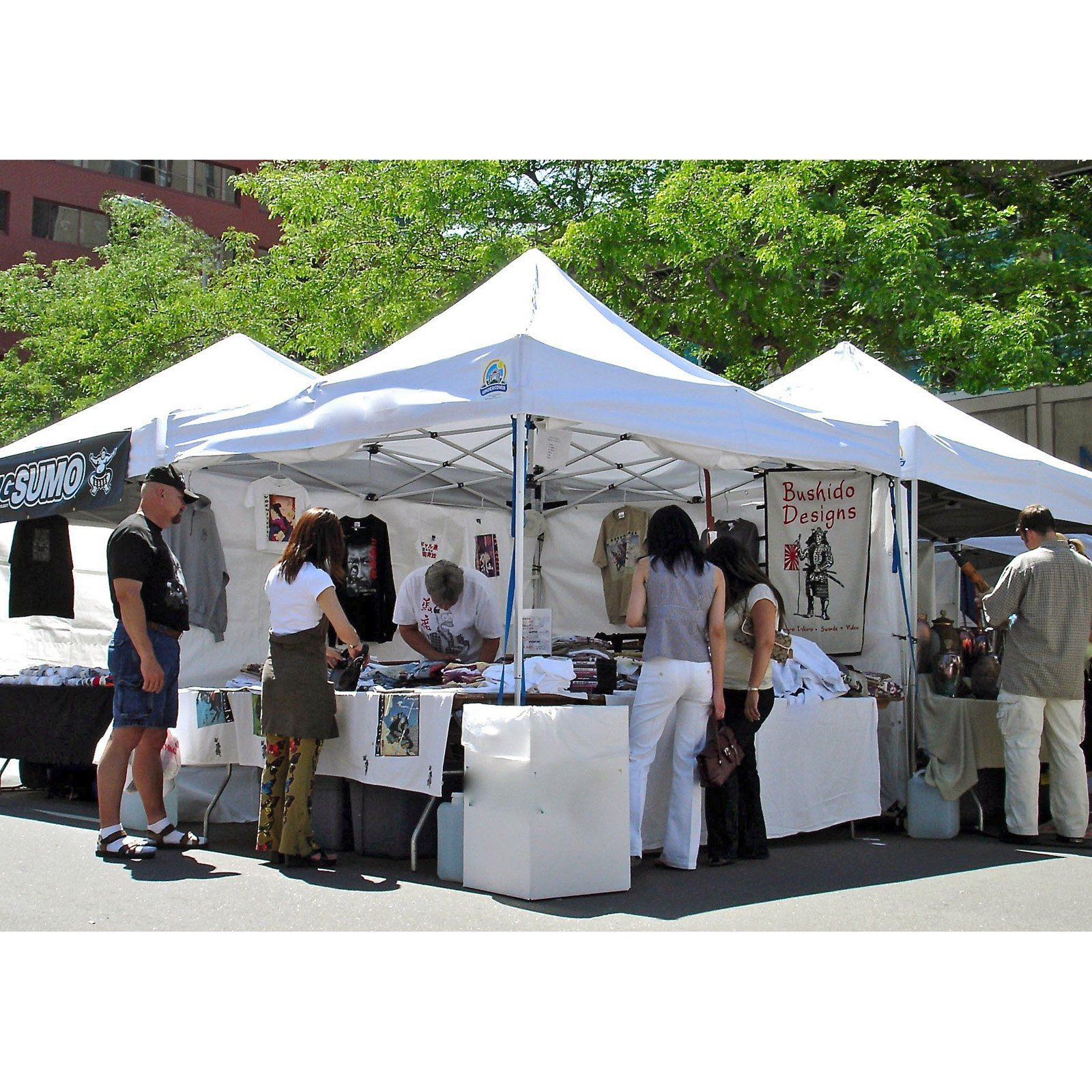 UnderCover® 10 x 10 ft. Professional Honeycomb-Core™ Aluminum Instant Canopy