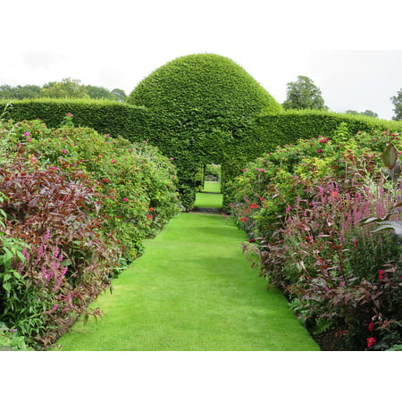Canvas Print Summer Topiary Hedge Garden Outdoor Green Shape Stretched Canvas 10 x 14