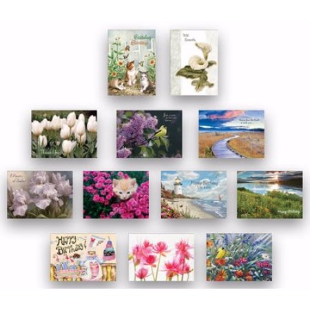 Card-Boxed-All Occasion Assortment (Box Of 24)](Party And Card Outlet)