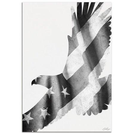 Metal Art Studio Wildlife Freedom Eagle Black & White | Contemporary US Flag Silhouette by Adam Schwoeppe Graphic Art (Freedom Metal)