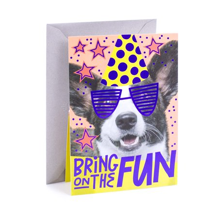 Hallmark Dog Birthday Greeting Card