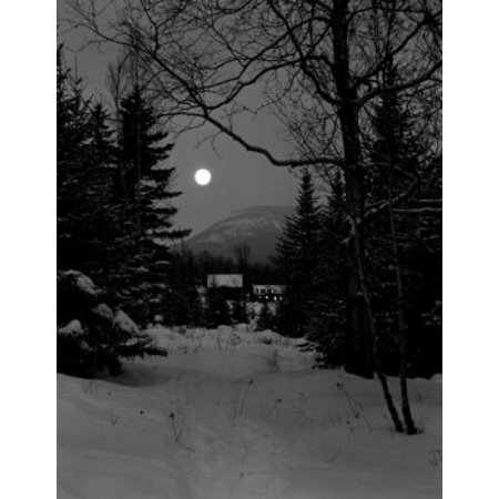 USA New Hampshire Lancaster large birch and distant farm buildings at night Stretched Canvas -  (18 x 24)