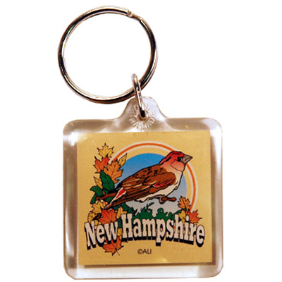Ddi New Hampshire Keychain Lucite 3 View (pack Of 96)