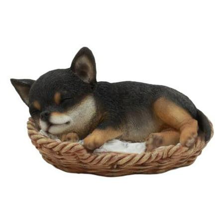 Steeping Basket (Ebros Lifelike Adorable Chihuahua Dog Sleeping in Wicker Basket Statue 6.5