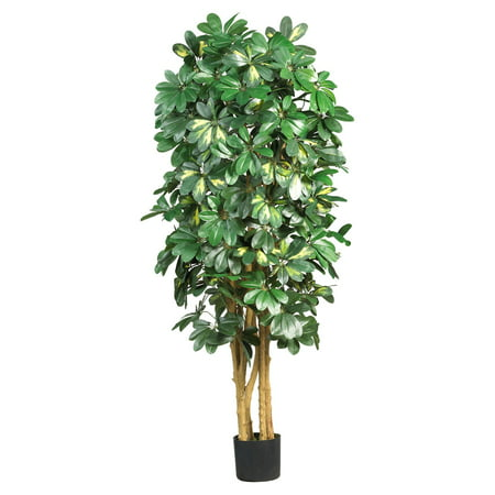 Nearly Natural 5 ft. Schefflera Silk (5 Schefflera Silk Tree)