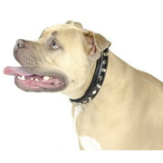 """Derby Dog Designer Series USA Leather Spikes and Diamond Padded Dog Collar - 8"""""""