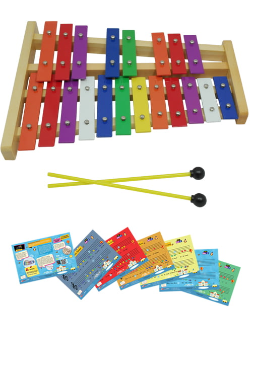 D'Luca 20 Notes Full Chromatic Xylophone Glockenspiel with Music Cards by D'Luca
