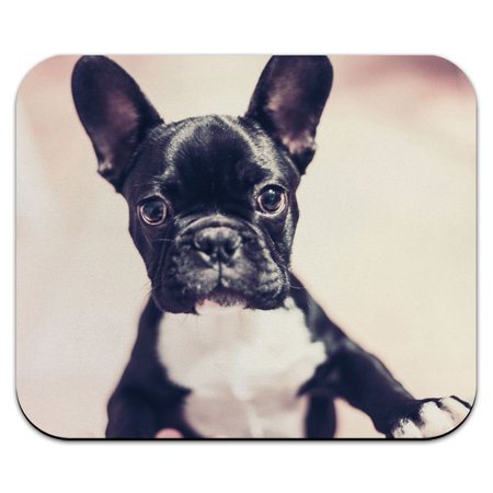 French Bulldog Puppy Wanting Attention - Frenchie Dog Pet Mouse Pad
