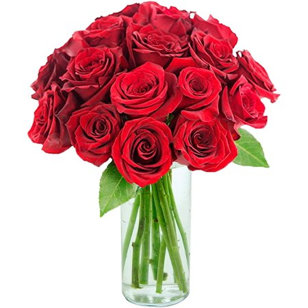 Arabella Farm Direct Bouquet of 18 Fresh Cut Red Roses with a Free Glass Vase