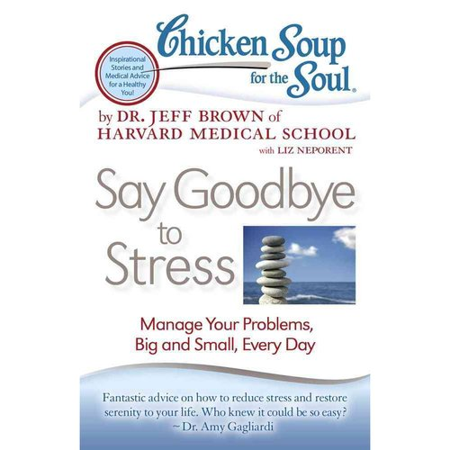 Chicken Soup for the Soul Say Goodbye to Stress: Manage Your Problems, Big and Small, Every Day