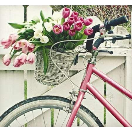 - Basket Of Tulips Poster Print by Vicki Dvorak