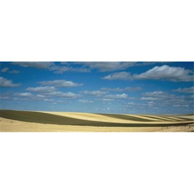 Panoramic Images PPI91393L Clouded sky over a striped field  Geraldine  Montana  USA Poster Print by Panoramic Images - 36 x 12 - image 1 of 1