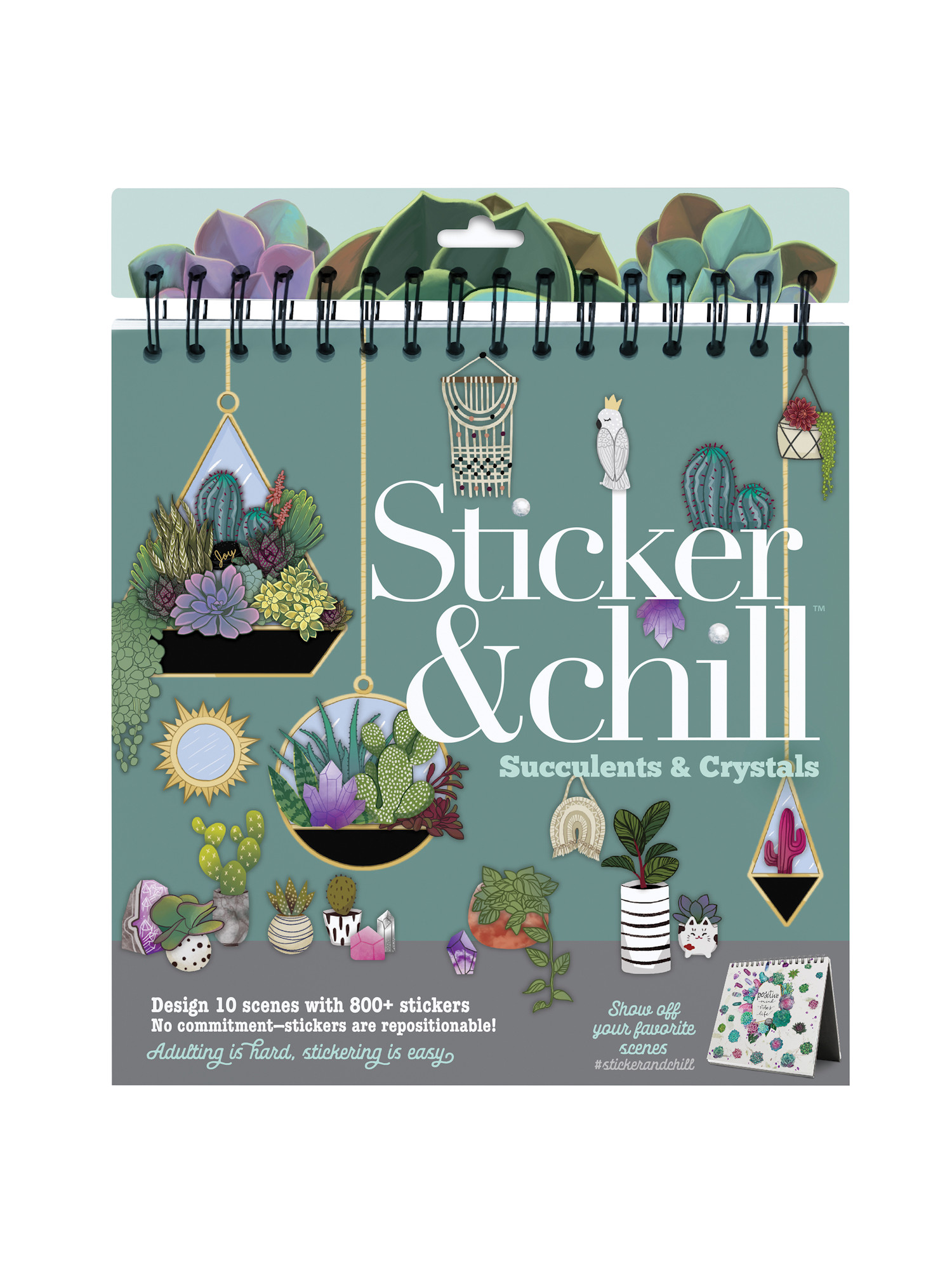 Ann Williams Group Succulent Sticker Chill Set Repositionable Plants And Crystals Sticker Book 10 Scenes 800 Stickers Easel Style Walmart Com Walmart Com