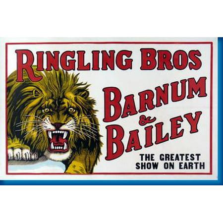 Ringling Bros. Circus Lion 11x17 Mini Poster