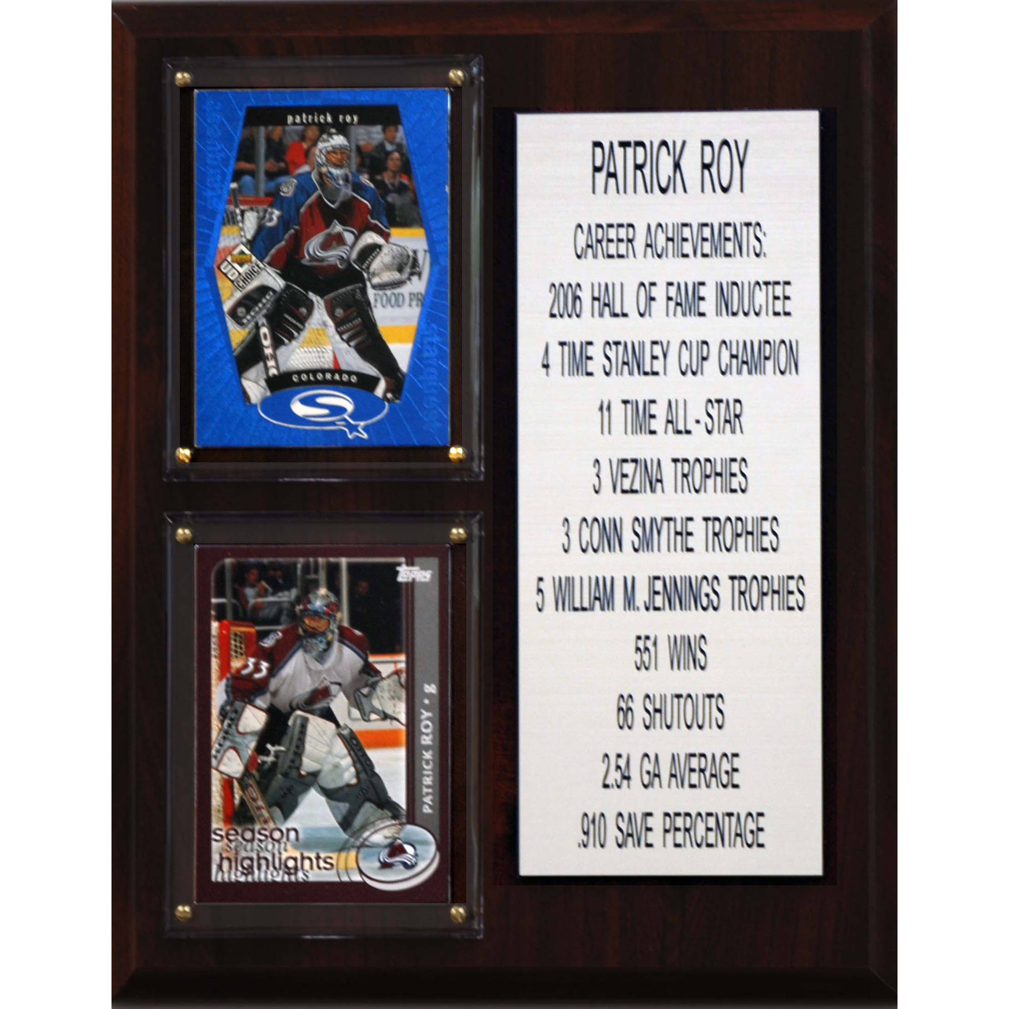 C&I Collectables NHL 8x10 Patrick Roy Colorado Avalanche Career Stat Plaque