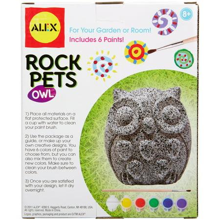 Best Rock Pets Paint Kit-Owl deal