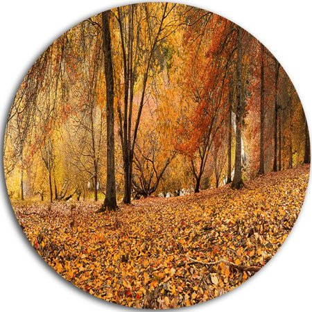 Design Art 'Brown Autumn Panorama' Photographic Print on (Autumn Brown Metal)