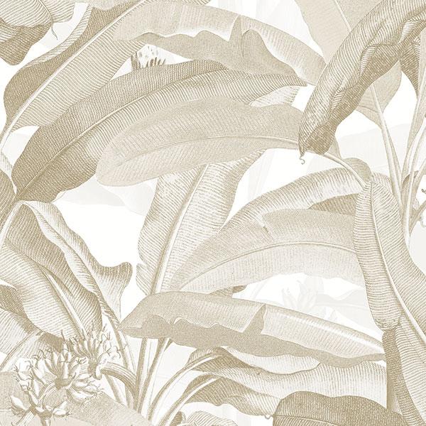 Norwall Manor House MH36536 Polynesian Leaves Wallpaper Tan, Beige