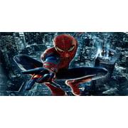 Amazing Spider-man Photo License Plate