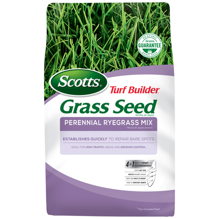 Scotts Turf Builder Grass Seed Perennial Ryegrass Mix, 3 lbs.