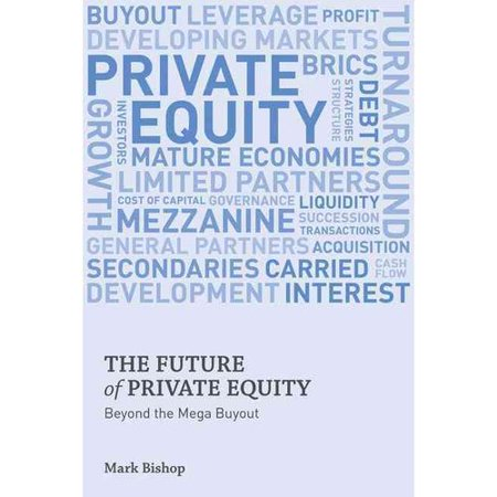 The Future Of Private Equity  Beyond The Mega Buyout