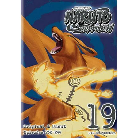 NARUTO SHIPPUDEN BOX SET 19 (DVD/2 DISC) (DVD) (Halloween Box Set 10 Disc)