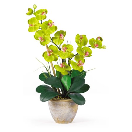 Nearly Natural Double Phalaenopsis Silk Orchid Flower Arrangement, Green - Led Lights For Flower Arrangements