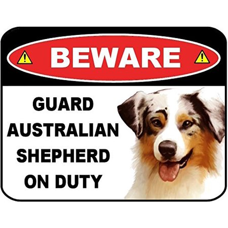 Australian Shepherd Terrier (Beware Guard Australian Shepherd on Duty (v1) 9 inch x 11.5 inch Laminated Dog Sign )