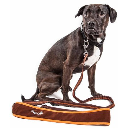 Laisse pour chien Absorbant les chocs Free Life LS20BRLG Free-Fetcher Mains, Marron - Grand - image 1 de 1