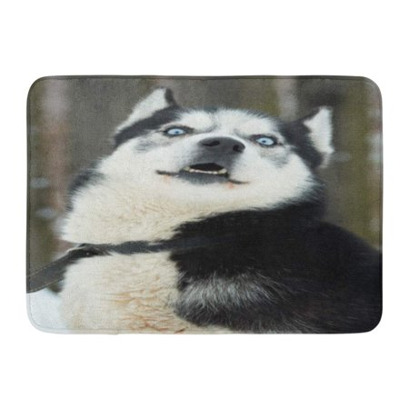 GODPOK Close Up on Blue Eyes of Beautiful Husky Dog Siberian Outdoors Portrait in The Nature Winter Time Rug Doormat Bath Mat 23.6x15.7 inch](Winter Door Decorations For Classrooms)