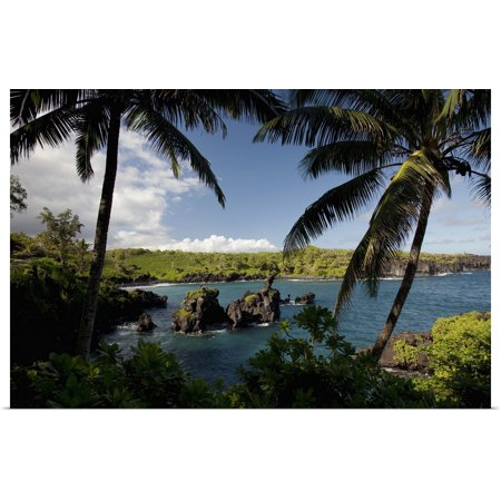 Great BIG Canvas | Rolled Jenna Szerlag Poster Print entitled Hawaii, Maui, A sunny view of Waianapanapa from behind palm -