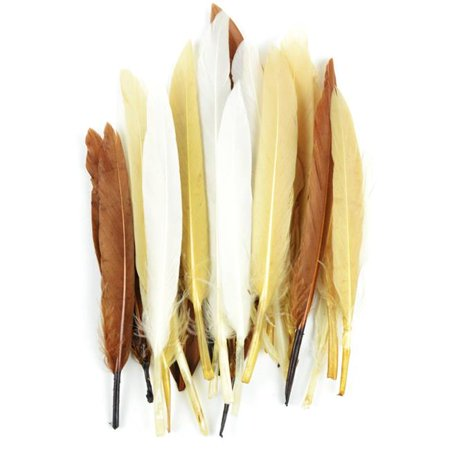 Midwest Design MD38297 Duck Quill Feathers - Earth Mix, 24 per Pack