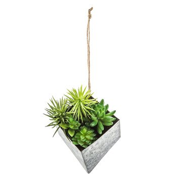 Succulents in Galvanized Metal Planter Wall Decoration Home Living Room Office](Metal Decorations)