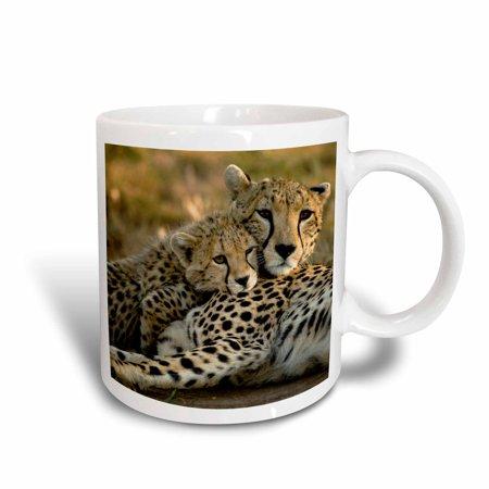 3dRose Cheetah with cub in the Masai Mara GR, Kenya-AF21 JMC0167 - Joe and Mary Ann McDonald, Ceramic Mug,