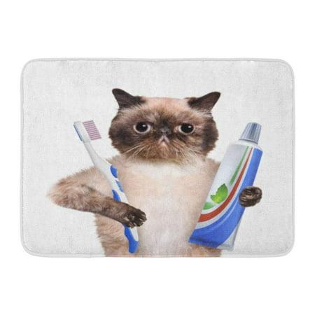 LADDKE Brushing Teeth Cat Dental Health Toothbrush Bathroom Beauty Doormat Floor Rug Bath Mat 23.6x15.7 (Welcome Tooth)