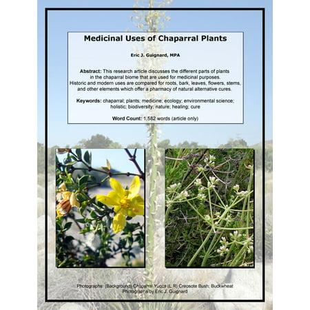 Medicinal Uses of Chaparral Plants - eBook
