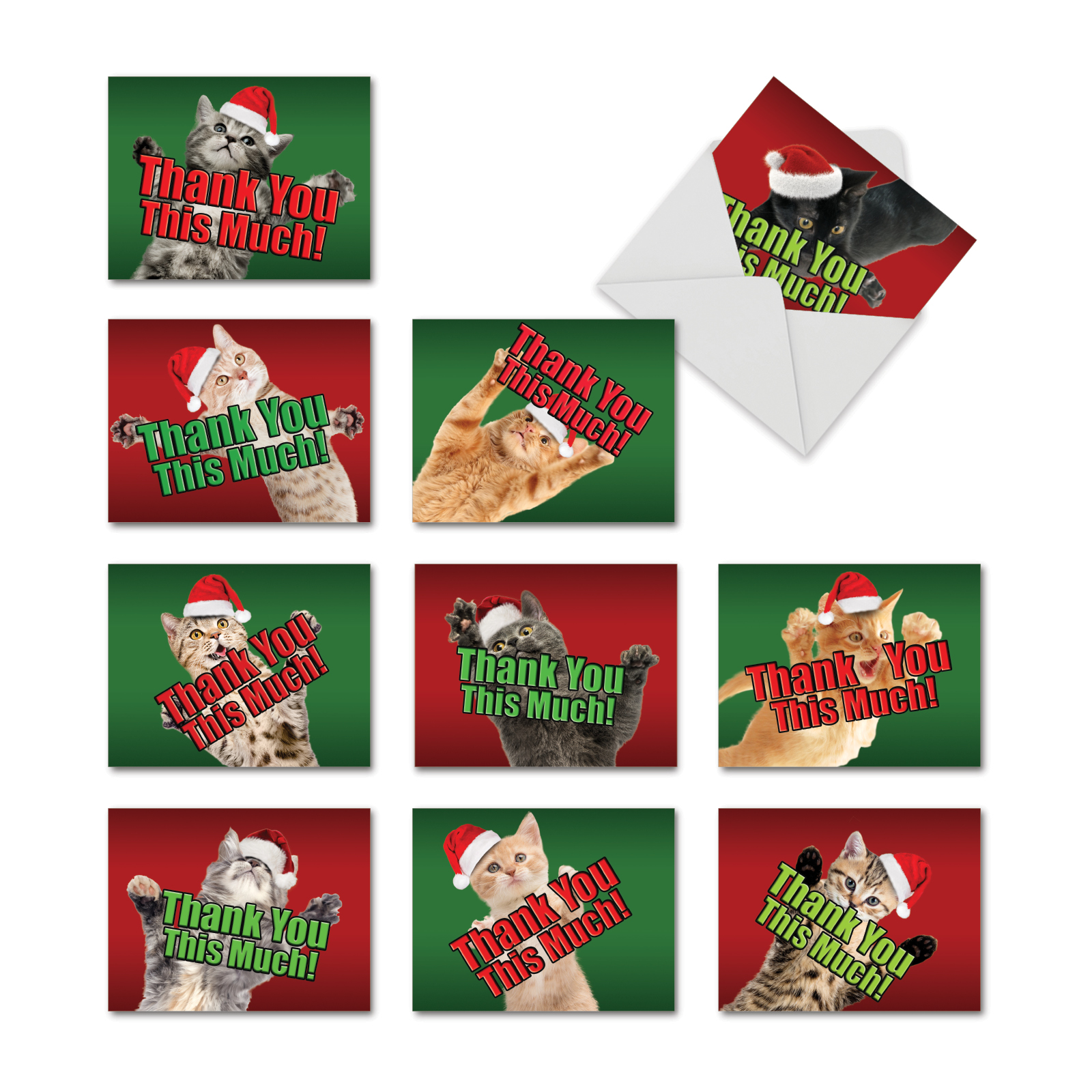 'M2368XTB-B1x10 M2368XTB CHRISTMAS CAT BIG THANKS' 10 Assorted Christmas Thank You Cards Thank You This Much! with Envelopes by The Best Card Company