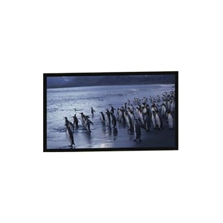 Accuscreen Electric Screen - New - AccuScreens Fixed Frame Projection Screen - N09254