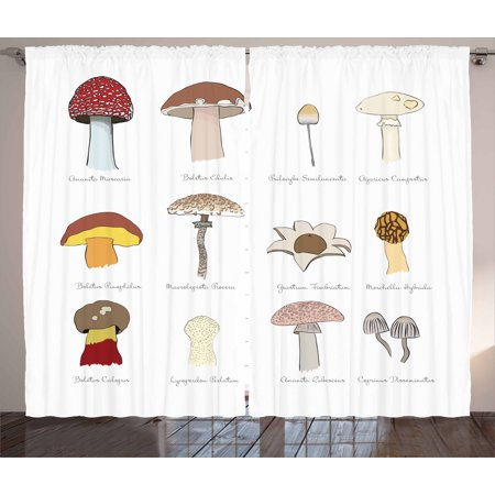- Mushroom Curtains 2 Panels Set, Colorful Fungi Pattern Blusher Boletus Sketch Style Plants Autumn Illustration, Window Drapes for Living Room Bedroom, 108W X 63L Inches, Multicolor, by Ambesonne